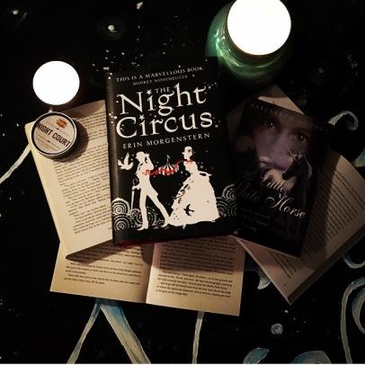 noight-circus